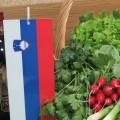 Slovenska zelenjava