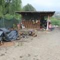 romsko naselje brezje
