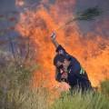 požar, gasilec, gašenje, Hrvaška, Dalmacija