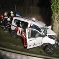 Raasdorf, čelno trcenje, drevo, prometna nesreca, psa