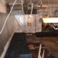 gojenje konoplje, prirejen prostor, hišna preiskava, Podvleka