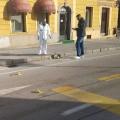 Vodnikov trg, cesta, kri
