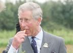 Princ Charles z napihnjeno krono