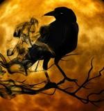 strah ptič luna