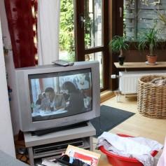 televizor katodni