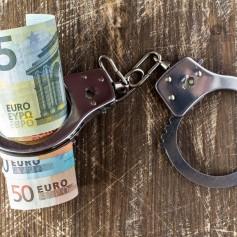 korupcija lisice denar