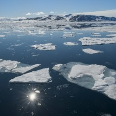 arktika, led