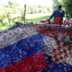teran-vino-slovenija-hrvaska_bobo1