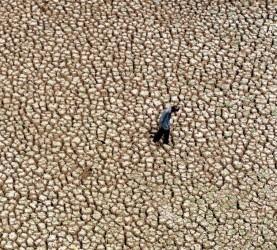 vrocina globalno segrevanje vrocinski val indija