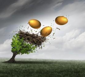 jajca, drevo, veter