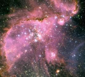 Vesolje, zvezde