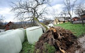 Na vzhodu Slovenije in v višinah bo pihal močan veter