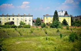 Po 10 letih je Pečečnik od Arso dobil soglasje za obnovo Plečnikovega stadiona