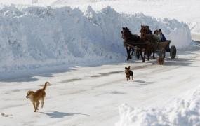 Na Balkanu in v Italiji kaos zaradi snega