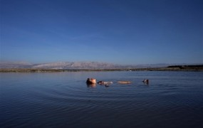 Mrtvo morje bi se lahko do leta 2050 posušilo