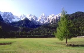 V nedeljo planinsko-čistilna akcija Očistimo naše gore in planine