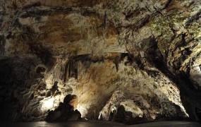 V Postojnski jami odkrili 3,5 kilometra dolg podvodni rov