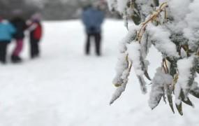 Evropa se kuha, v Avstraliji otroci celo prvič vidijo sneg