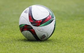 Štiri skandinavske države bi skupaj organizirale nogometno EP