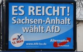 Delegati nemške AfD zavrnili ukinitev dvojnega vodstva