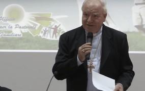 Nadškof Liberati: Pomoč migrantom je moralno škodljiva in odpira vrata islamu