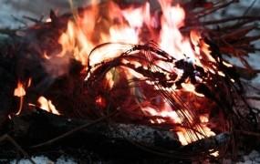 Ptujski piroman naj bi zakuril devet požarov in povzročil 2,4 milijona evrov škode