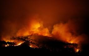 Ljudje so goreli v avtomobilih: na desetine mrtvih v velikem gozdnem požaru na Portugalskem