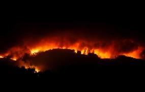 V katastrofalnih požarih na Portugalskem umrlo na desetine ljudi