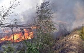 Zaradi vročine in suše te dni precejšnja nevarnost požarov