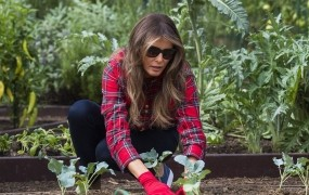 Melania Trump je vrtičkarica, ob Beli hiši prideluje zelenjavo