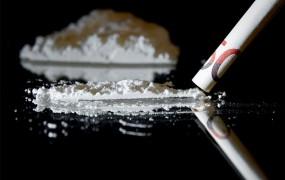 Europol: Trgovina z drogami v Evropi letno obrne 24 milijard evrov
