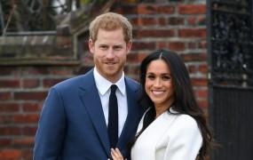 Rasistično žaljenje zaročenke princa Harryja je odneslo šefa britanskega Ukipa