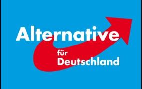 Nemško AfD bosta odslej vodila Meuthen in Gauland