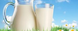 mleko krava zdravje tony