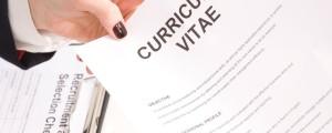 Življenjepis, cv, zaposlitev