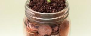 denar, cekini, varčevanje