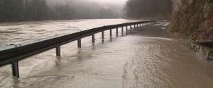 Tako je poplavljala Sava