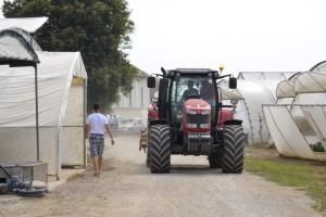 Za kmetijstvo in razvoj podeželja 134.000 evrov
