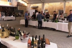 VIDEO&FOTO: Pop Up Wine Festival