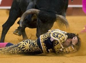 Na Majorki prepovedali ubijanje in poškodovanje bikov v bikoborbah
