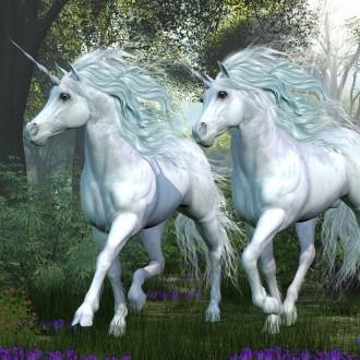 Obstaja tudi teorija, da ima vsak človek svojega samoroga, ki ga čuva kot angel varuh.