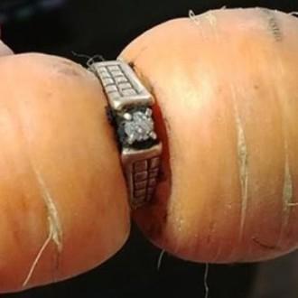 Nenavadni korenček, ki je razrešil skrivnost izgubljenega prstana.