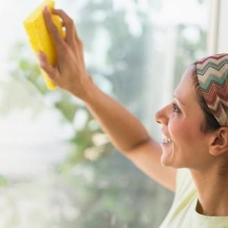 Okna lahko očistite že s kisom in malo detergenta.
