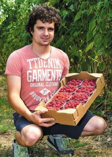 Nepogrešljive v poletnih dietah