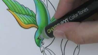 Kameleonski flomaster