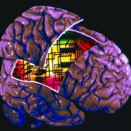 Umetna inteligenca na inteligenčnem testu enako uspešna kot človek