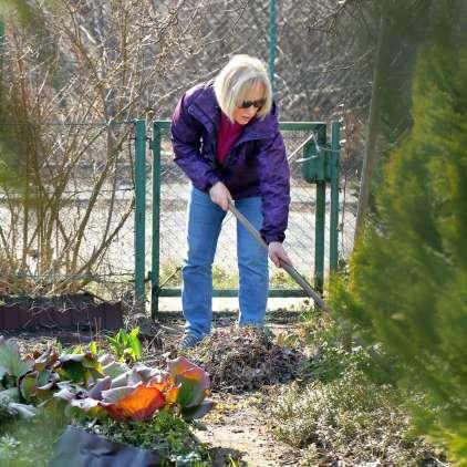 Skrajni čas za okrasne vrtove