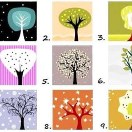 Test: Katero drevo vas najbolj privlači?