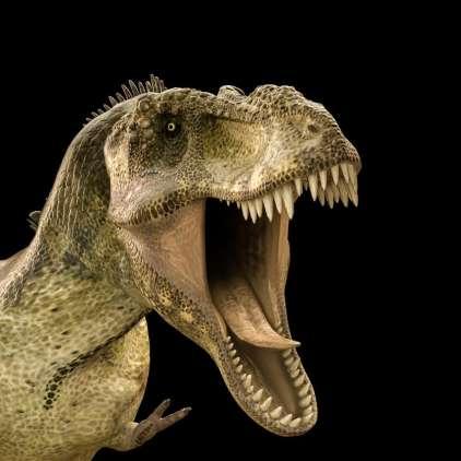 Tiranozaver Rex ni bil dober tekač