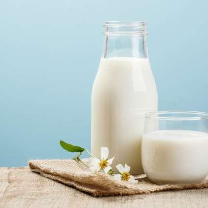 Mleko in mlečni izdelki: da ali da?